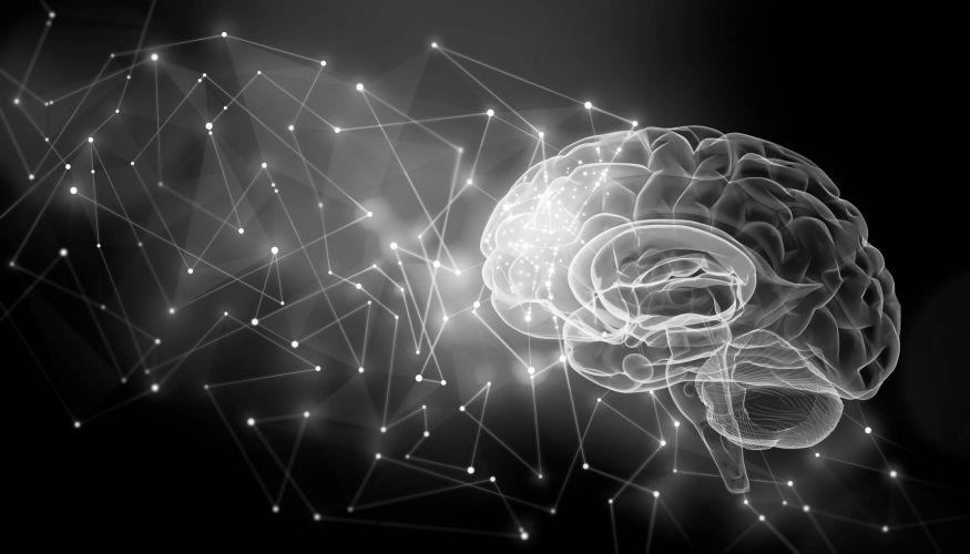 Psicologia Cognitiva Applicata